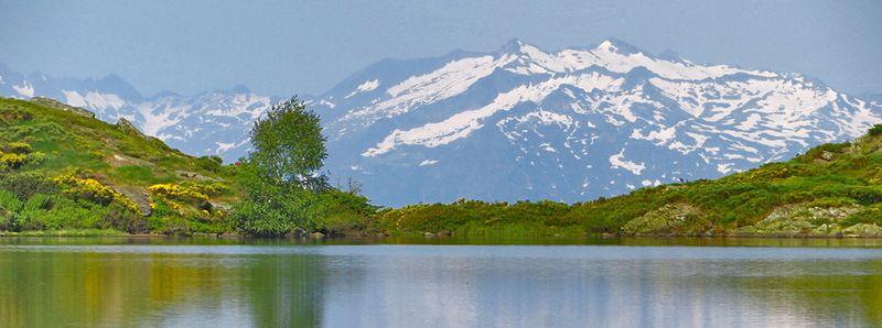 Nature en Ariège